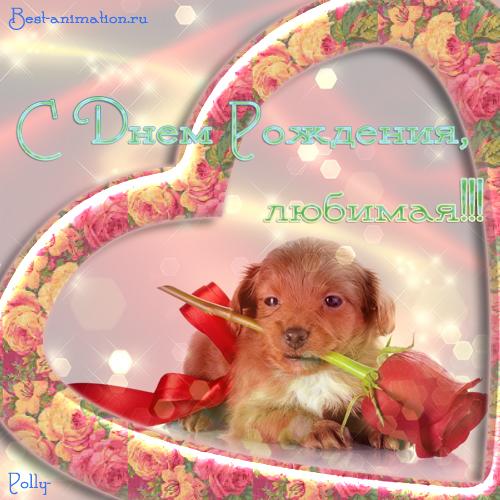 Открытка на День Рождения Любимой девушке Роза