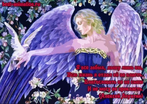 Картинка со стихами для любимой Ангел