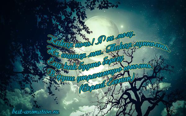 Картинки со стихами о Любви Ночь