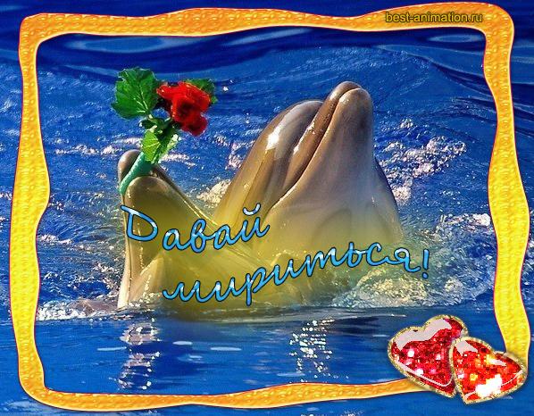 Открытка Примирение Дельфин