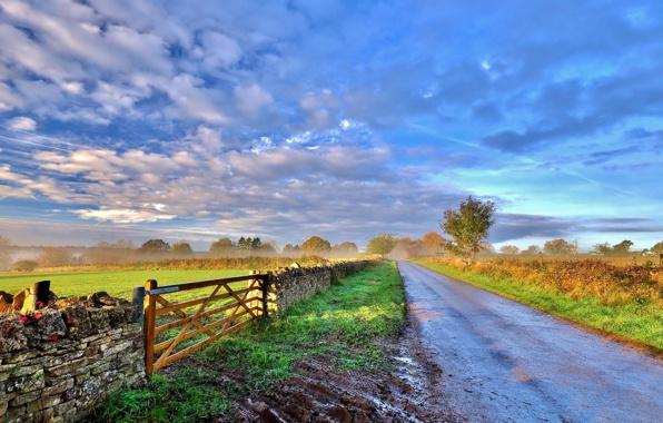 Дорога, поле, утро - картинка к стихам Анны Купровской