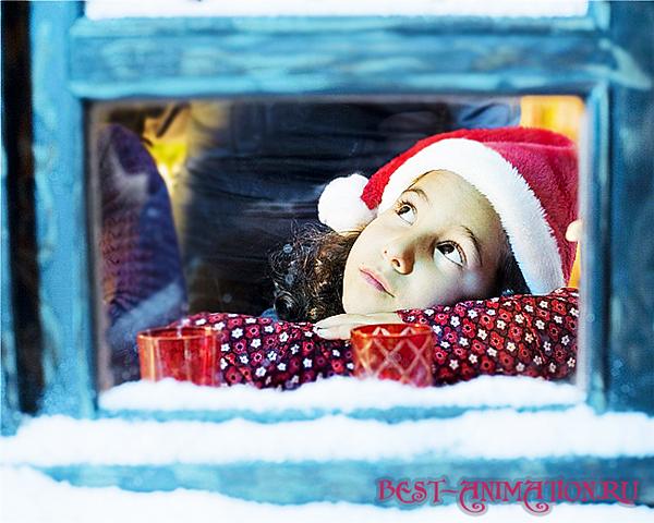 Поздравить друзей, любимых, родных С Новым Годом Синей Козы Мечты